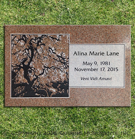 The beautiful mottling of Morning Rose granite is used to bring life to a custom tree design.